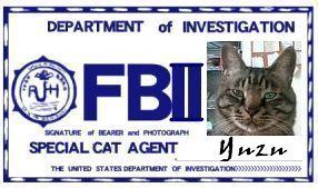CAT連邦捜査官 NO.012 「Yuzu」
