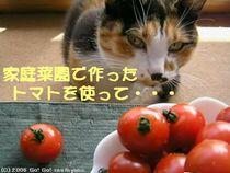 トマトを使って