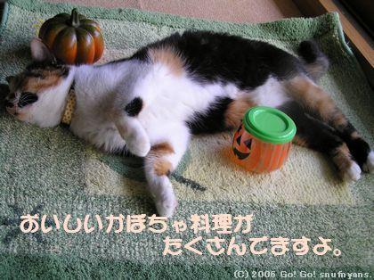 おいしいかぼちゃ料理がたくさんでますよ。