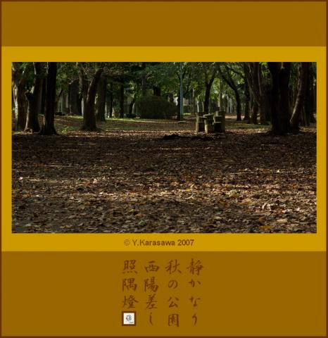 1107秋の水辺の公園