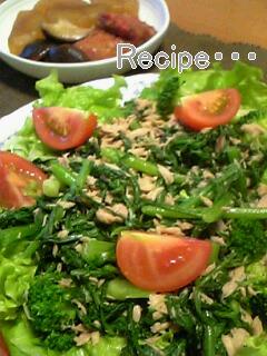 春菊とツナのサラダ