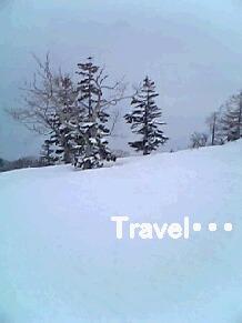 雪景色その1・・・春スキーにしては、雪質はGood♪
