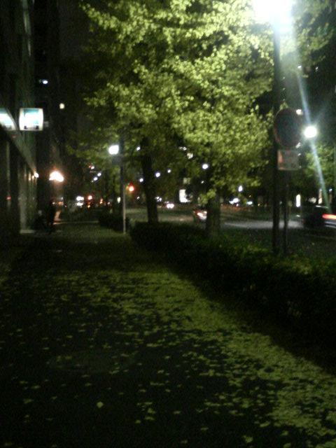 20061230205455.jpg