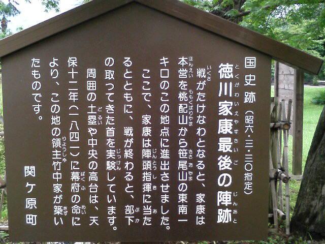 TS370601.jpg