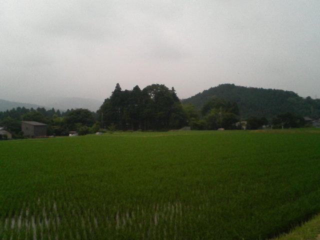 TS370610.jpg
