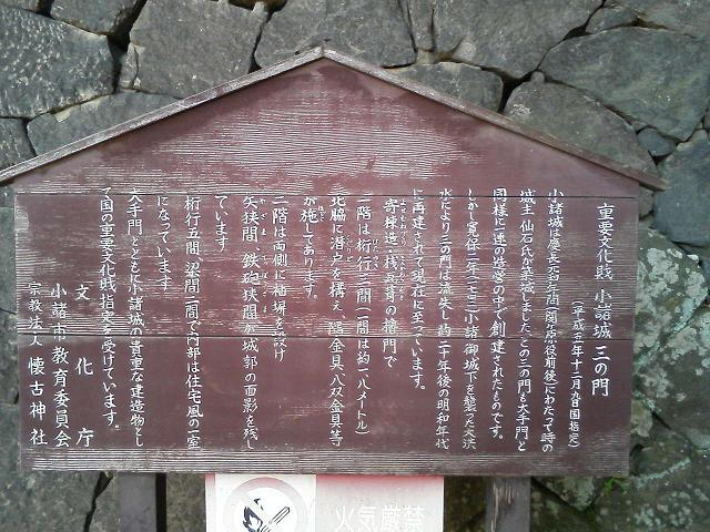 TS370768.jpg