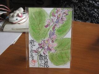葛の花 19.9.24