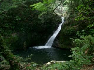 十曽池の滝の一つです 2007.9.23