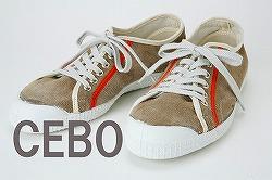 small-CEBO.jpg