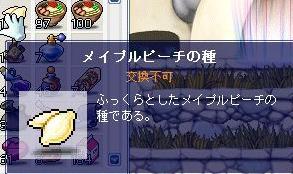 03.09(1).jpg