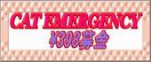 1159026993_2354_3.jpg