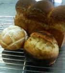 自家製レーズン酵母のパンブランオーレ・メロンパン・ポームドテール