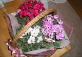 flower-004.jpg