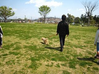 ばぁばと散歩。