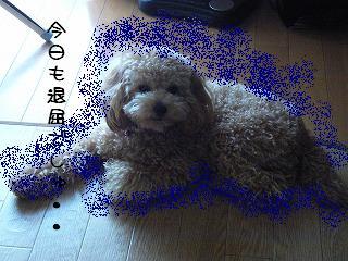 ブルーのオーラ64