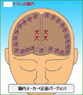 脳内さくら正面