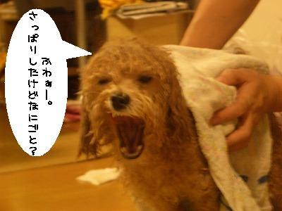 風呂あがり