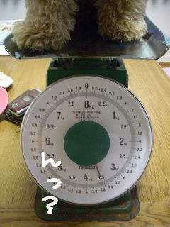 体重測定9ヶ月