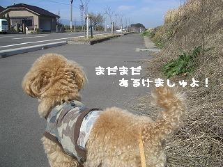 まだ歩けましゅ