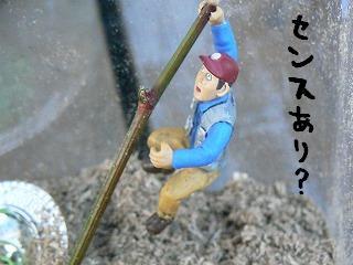 ひょえー101