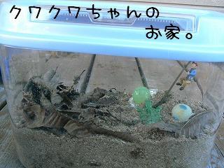 クワちゃんおうち101