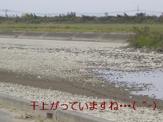 河川敷。水無し。