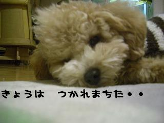 疲れました