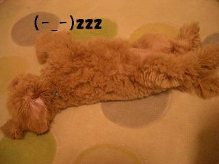 おやすみですか?