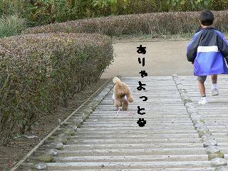 階段おりる