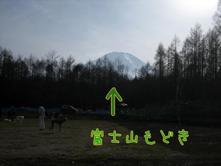 富士山じゃないらしい
