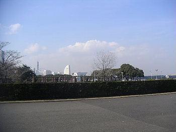 20070223085033.jpg