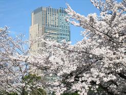 東京ミッドタウンと・・・