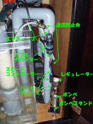 カルシウムリアクター CO2