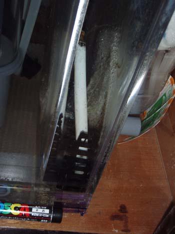 PC200414.jpg