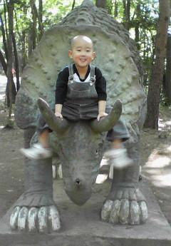 龍太朗とトリケラトプス