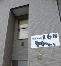 168-291.jpg