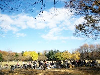 小金井公園。