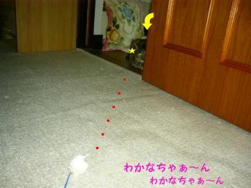 20070528001841.jpg