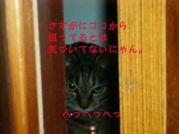 20070528002701.jpg