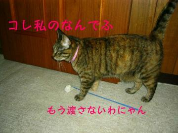 20070528002815.jpg