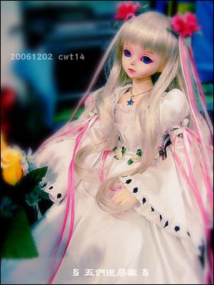 061218-cwt003.jpg