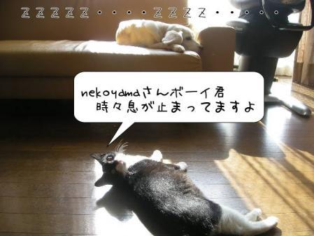 200711139.jpg