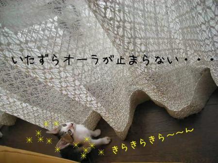 200711412.jpg