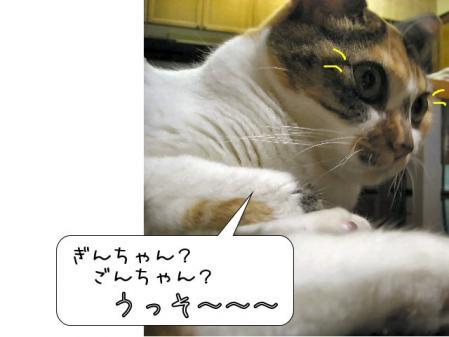 200711420.jpg