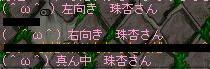 Maple000304.jpg