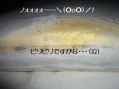 20061201224715.jpg
