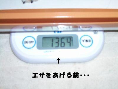 20061214200206.jpg