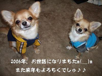 20061231233032.jpg