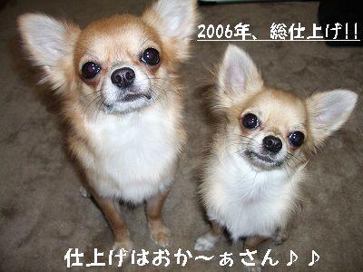 20070101014909.jpg