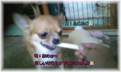 Image088.jpg